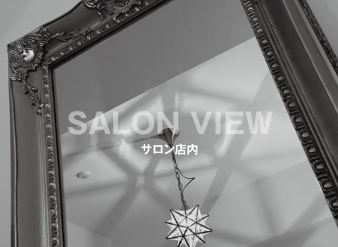 SALON VIEW